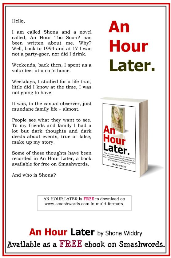 An Hour Later by Shona Widdry